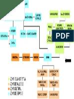 organigrama-propuesta.pdf