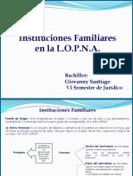 49392279 Institiciones Familiares