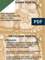 AULA 1 - HISTOLOGIA VEGETAL (1).ppt