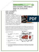 ANELIDOS.docx