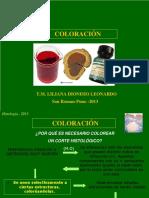 Clase Coloracion