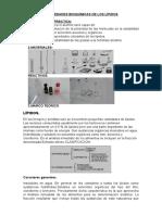 propiedades bioquimica de los lipidos