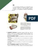 MEDIOS DE UNIÓN CORRECCION.docx