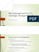 Risk Considerations for Geologic CO2 Storage
