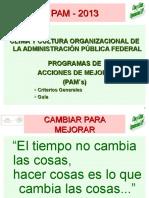 Criterios PAM 2013
