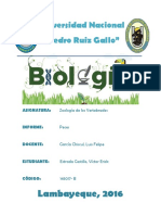 INFORME PECES- VERTEBRADOS.pdf