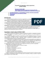 Sistemas Gestion Seguridad y Salud Ocupacional Ohsas 18000
