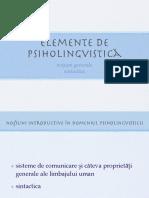 Curs Introductiv Psiholingvistica Sintactica - Copie