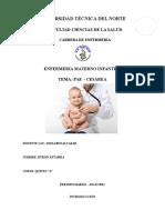 228205101 Pae Cesarea Docx