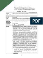Resumen Ejecutivo - Esquema Víctor Raúl Haya de La Torre