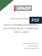 Cálculo de Medición Biométrica de Las Hojas de Sol y Sombra Del Citrus x Limon