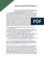 Article M Jesus Gómez. Demencias