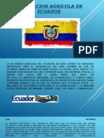 Produccion Agricola Ecuador