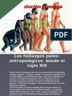 La Evolución humana