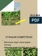 PT-BAB 4a- GULMA