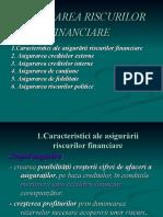 ASIGURAREA RISCURILOR FINANCIARE