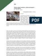 Teoria Impura Do Direito e Brasil_ Ponderar o Direito Estrangeiro_ – Por Tiago Gagliano Pinto Alberto _ Empório Do Direito
