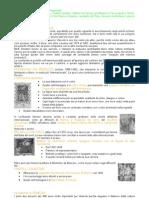 istituzioni di storia dell'arte 1 secondo modulo punti 14-15