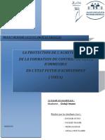 Projet Memoire Licence Vefa s6