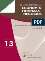 Enciclopedia de Economia y Negocios Vol 13