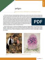 La Flora en Peligro- IER