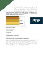 PAVIMENTO FLEXIBL1