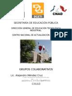 Manual de Grupos Colaborativos