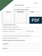 guía nutrición 5° básico Ciencias Naturales