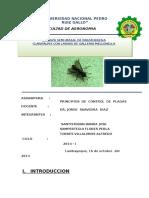 parateresia claripalpis crianza.docx