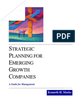 Strategic Planning for Emerging Growth Companies