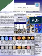 sapo-tilapia-poster.pdf