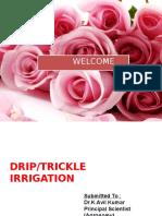 DRIP Presentation
