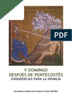 V Domingo Después de Pentecostés -Sugerencias para Homilía