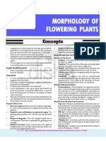 5-Morphology of Flowering Plants