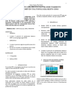informe OSPF
