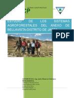 Sistemas Agroforestales en Jarpa