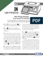 CAS PLU Programming