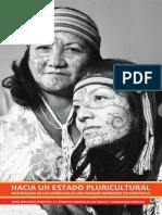 Ddhh Pueblos Indigenas