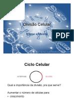 Divisao_Celular_-_Mitose_e_Meiose.pdf