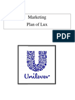 Marketing Plan of Lux