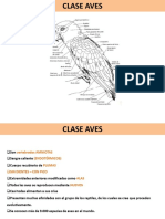 Present Aves 2012