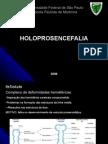 Holoprosencefalia2008
