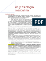 Resumen Anatomia y Fisiologia Sexual Masculina
