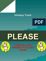 (8) Urinary Tract