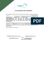 Acta - Falencias Del Servidor
