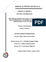 Tesis Edgar Reintroduccion de R. Cincta Cincta Agosto 2014