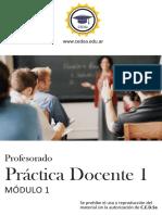Modulo I Practica Docente