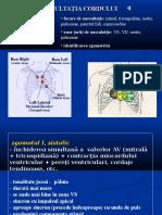 Cardiac-curs