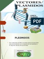Plasmid Os