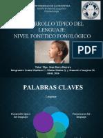 nivel-fonetico-fonologico
